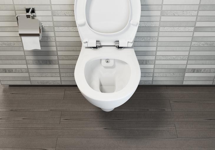 Bidet Toilet Kopen : Vitra s50 randloos wandcloset met bidet wc met bidet wcmetbidet